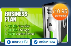 Business Hosting Plan - More Information